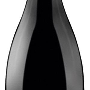 cancha-botella-carignan-2-300x300